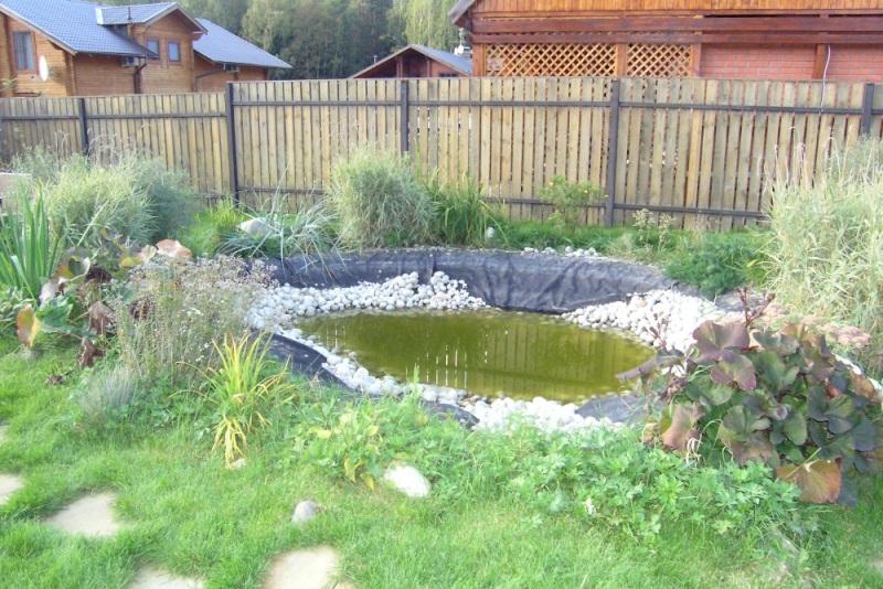 фото альпийская горка с прудом
