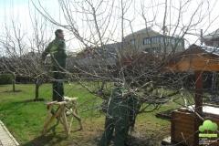 Садовники обрезают сад
