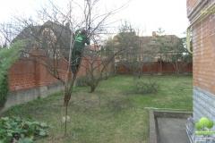 Весенняя обрезка сада