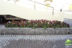 oz-cvet-10