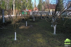 pobelka-7